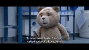 ayi-teddy-2